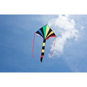 Ecoline Kids Simple Flyer Radient Rainbow Kite